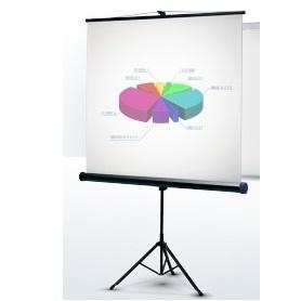 аренда экрана для проектора киев